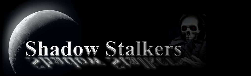 Welcome To Shadow Stalkers